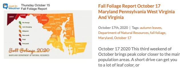 Fall Foliage Report October 17