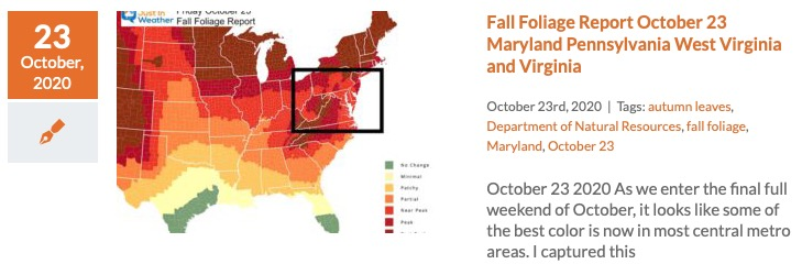 Fall Foliage Report October 23